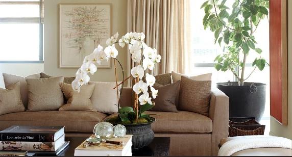 interior-design-living-room-pinterest